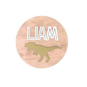 Personalised Dinosaur Children's Wall Sign