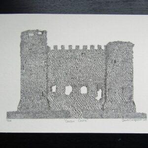 carlow castle print